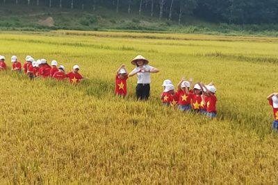 Trẻ tham quan trang trại nông nghiệp