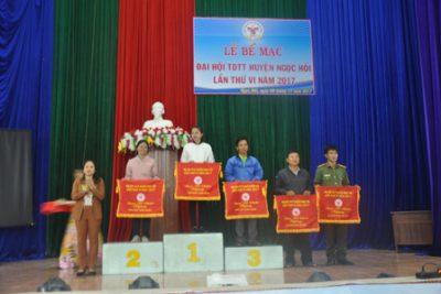Thành tích Đại hội TDTD cấp huyện, cấp tỉnh năm 2017