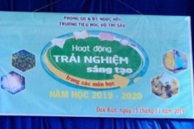 Trường Tiểu học Võ Thị Sáu tổ chức hoạt động trải nghiệm sáng tạo cho học sinh